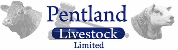 Pentland Livestock Logo